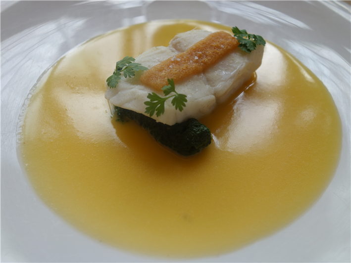 turbot with vin Jaune sauce